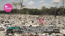 Alison Teal - Shocking Global Plastic Crisis
