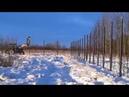Монтаж винтовых свай зимой Свайный фундамент зимой 1 ч