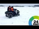 На Байкале сотрудники МЧС помогли нерпе вернуться под лед - МИР 24