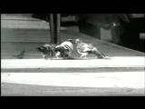 Mos Def feat.Talib Kweli,Common - Respiration