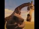 Смех Глории ((Мадагаскар))😄