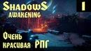 Shadows Awakening - первый взгляд, обзор и прохождение новой и очень красивой изометрической РПГ 1
