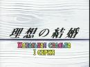 Mooncat Идеальная свадьба Risou no Kekkon 01 10