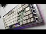 Kailh Jade &amp Navy typing test KBDfans PCB + XD84 case