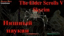Прохождение Skyrim 011 - няшный паукан
