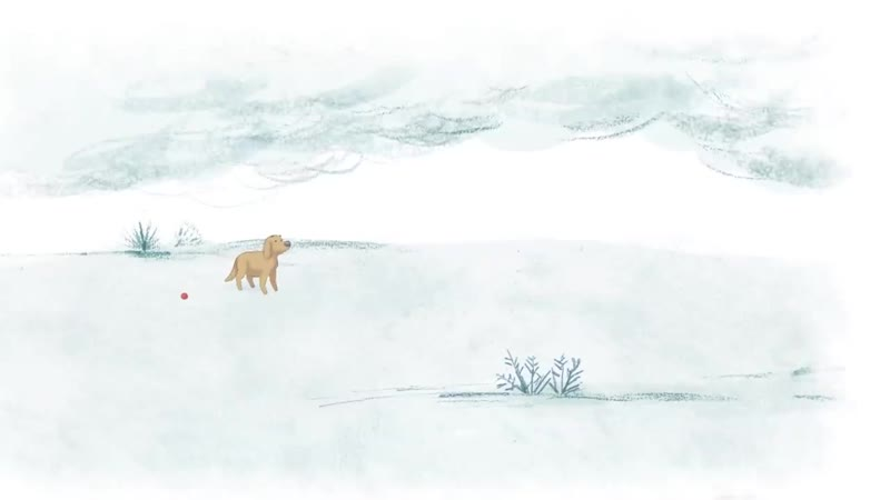 Heartwarming animation of dog's journey will bring a tear to your eye _ Billie b