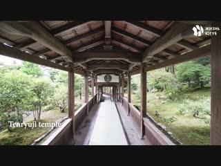 Путеводитель по Японии для первой поездки [ЖЮ-перевод]