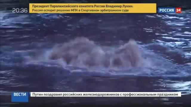 Новости на Россия 24 • Мощный шторм обрушился на столицу Македонии: 21 человек погиб