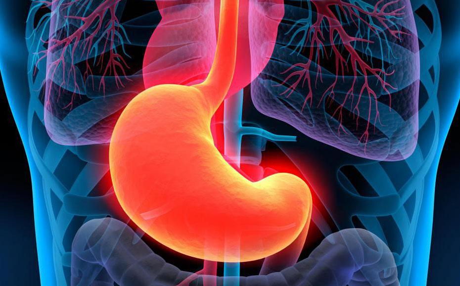 Рак желудка влияет на желудок.