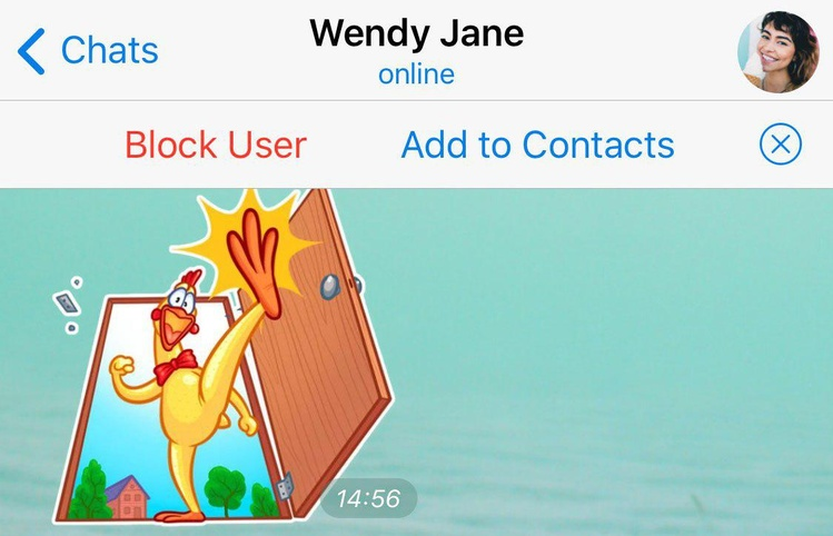 add to contacts telegram