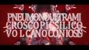 Dasu - Pneumonoultramicroscopicsilicovolcanoconiosis ft. Kagamine Len/GUMI - Rus Sub