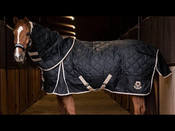 Horse One Shop - Зимняя попона MIU Premium Black Star New