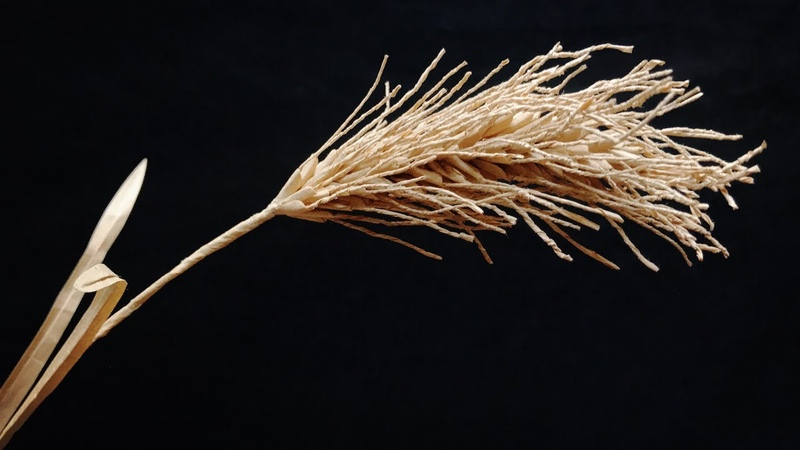 ABC TV | How To Make A Wheat Branch Paper - Craft Tutorial