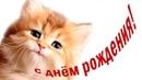 С днем рождения Милое поздравление ребенку от котенка Мультяшные поздравления
