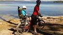 Обзор детского велокресла HAMAX