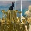 Выставки кошек