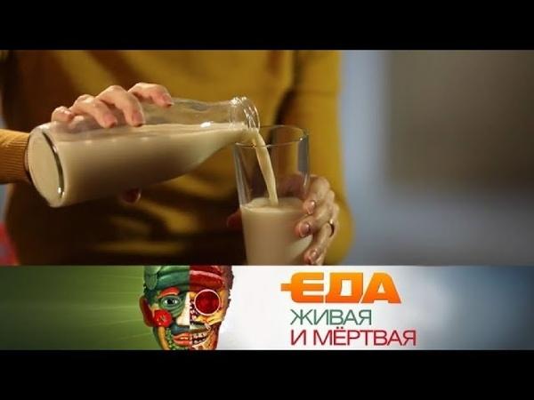 Еда живая и мёртвая: все о молоке и 5 необычных рецептов из разных уголков России (10.03.2018)