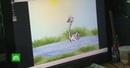 Зеки на Камчатке произвели фурор, создав мультик про лебедя-наркомана