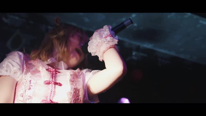Zenbu Kimi no Sei Da - WORLD END CRISIS (Official LIVE MOVIE) (2018)
