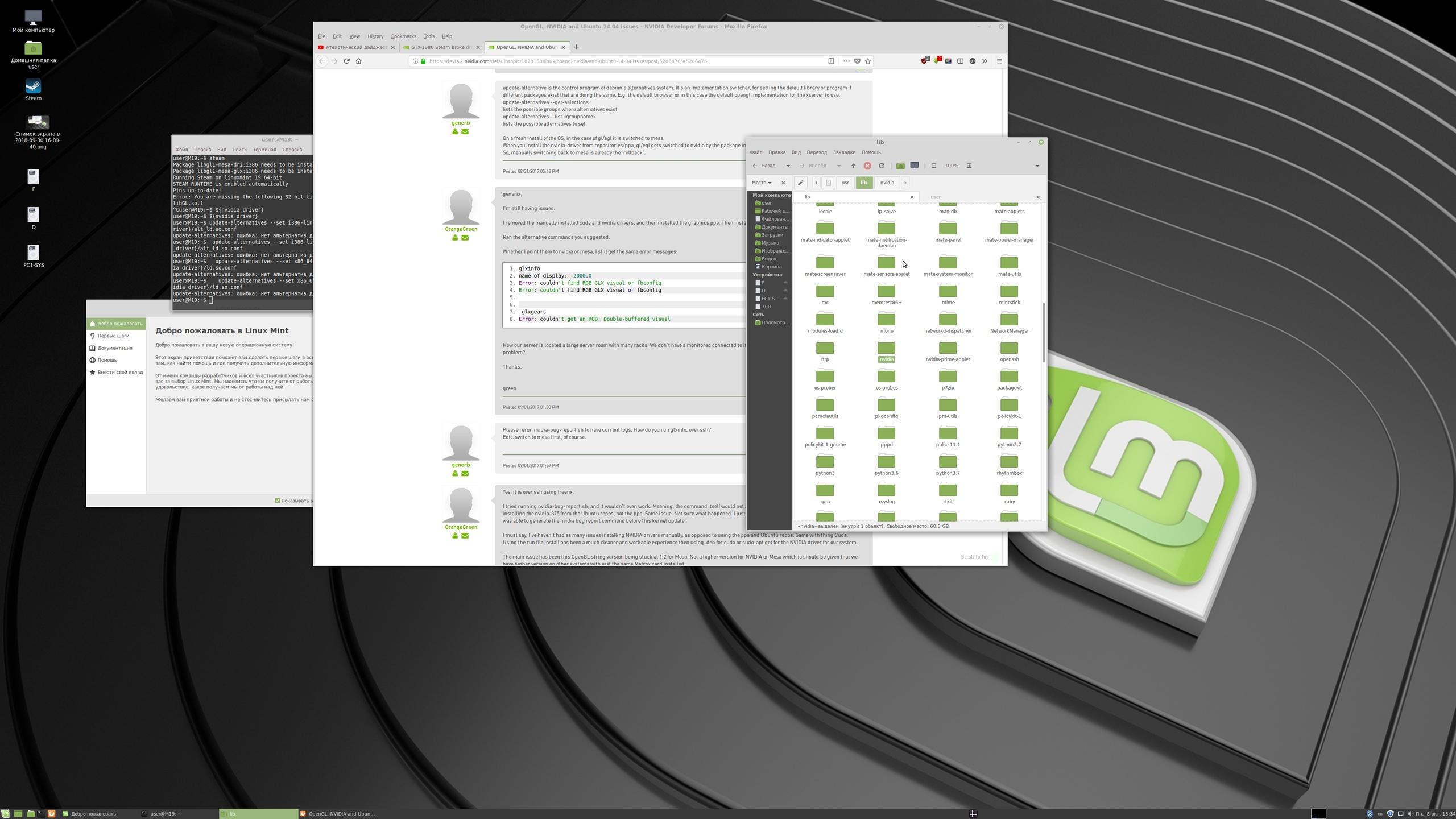 GTX 1060 + Mint 19 x64 where 32bit libs?? Failed to load libGL