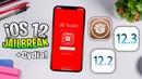 Jailbreak for iOS 12.3.1 - 12.2 Support, 12.1.4 - 12.1.2 Tweaks works!