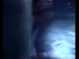 Cat Rapes Dog - Moosehair Underwear
