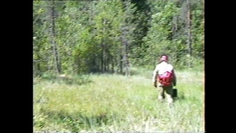 1992 г -Бокситогорский район - Поход с двоюродным братом Сергеем, по исчезнувшим деревням, Могильское -Маредница - Усадище, Виде