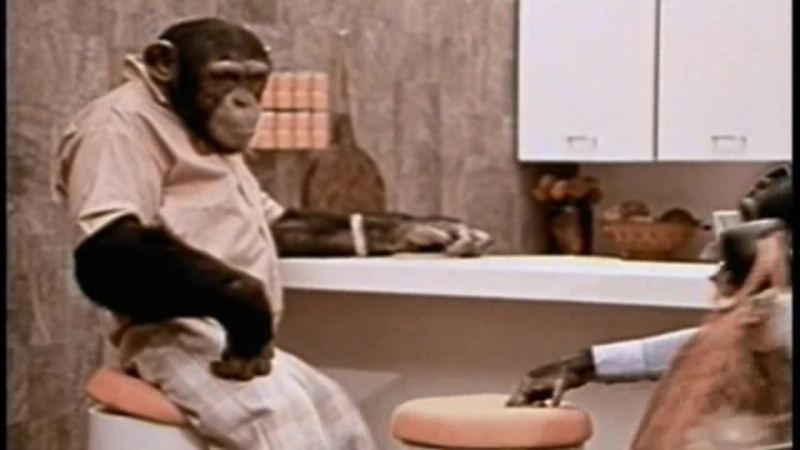 Lancelot Link Secret Chimp - 0112 - Landlubber Lance; The Temporary Thanksgiving Turkey Truce