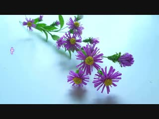 DIY How to make Aster amellus flower by crepe paper Làm hoa thạch thảo giấy nhún