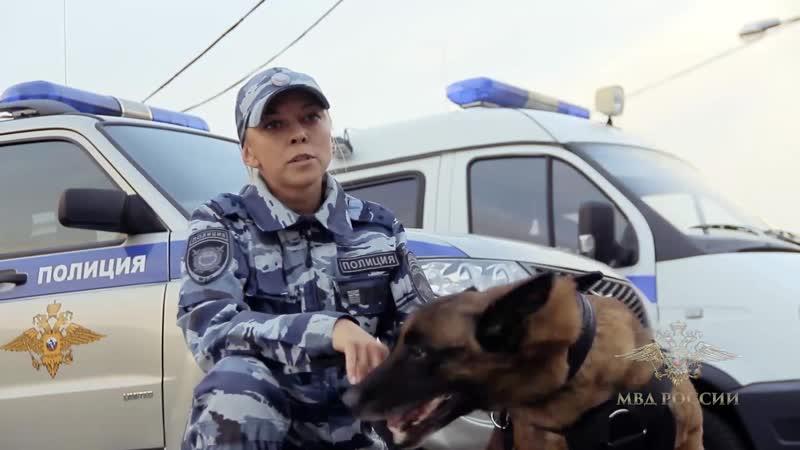 Лучший кинолог МВД России старший лейтенант полиции Юлия Тараско