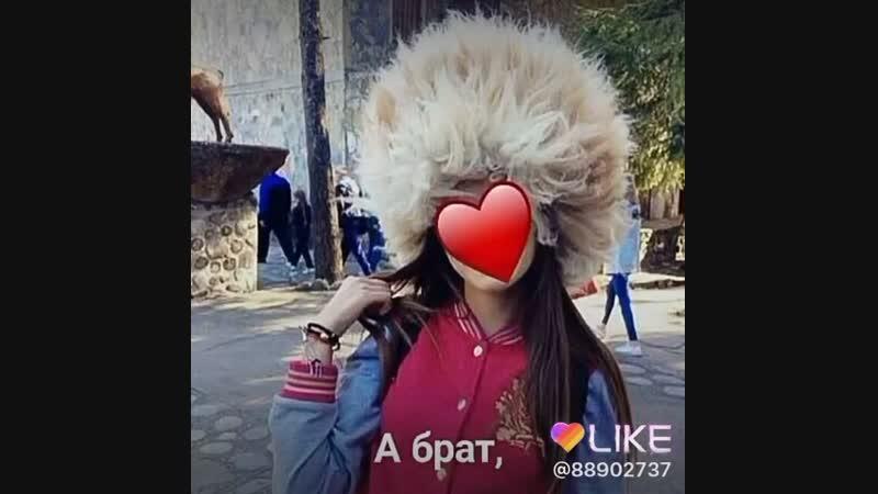 Like_6640548013997325430.mp4