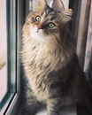 Анастасия Калинина фото #37