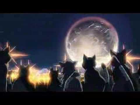 「猫の集会(監督:新海誠/制作:コミックス ウェーブ フィルム)」