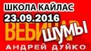 А.Дуйко ШУМЫ - вебинар 23.09.16 Как выбирать шумы Дуйко Школа Кайлас