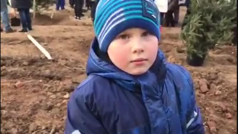 Елки: Начало в Солнечногорске