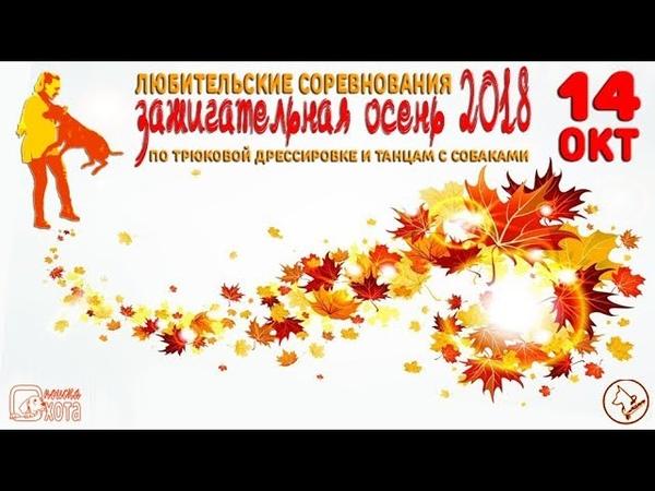 Зажигательная осень-2018 Сагачева Юлия и Ови