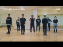 Growl versi team 100 Days My Prince.mp4