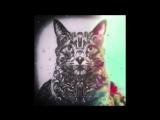 Zen Mechanics &amp Egorythmia - Dragonfruit (E-Clip Remix)