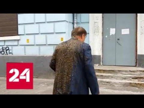СК возбудил дела по факту нападений на российских дипломатов на Украине Россия 24