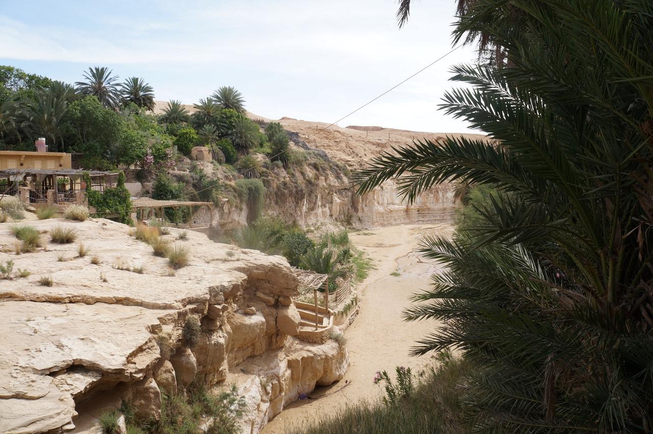 Тамерза - самый большой горный оазис в Тунисе