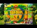 Netsky feat. A.Chal - Tequila Limonada