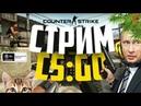 🔴 Трансляция Counter-Strike/CS:GO Stream from noob till global(путь война) ММ со зрителями!18 (мат)