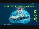***Вебинары по вторникам*** - №3 - Как вождение меняет наш мозг