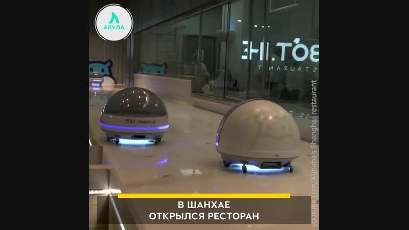 Роботы-официанты | АКУЛА