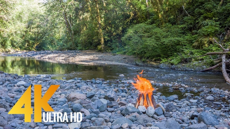 River Campfire - 5 Hour Peaceful Fire Sounds Birds Chirping in 4K - 2160p - Episode 3