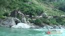 Sheep herd crossing the bridge 🐏🐏🐏🐏🐑🐑🐑