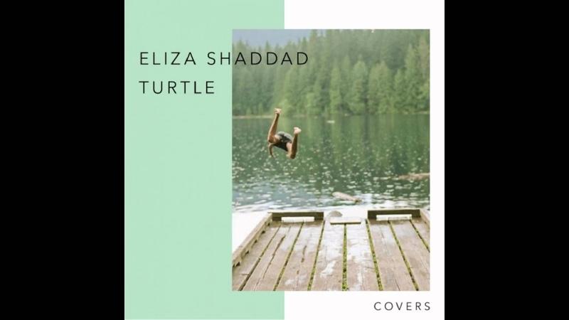Eliza Shaddad x Turtle Driftwood Travis Cover