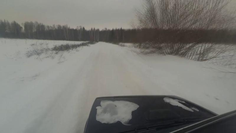 ШОК Лось выскочил из леса на дорогу!