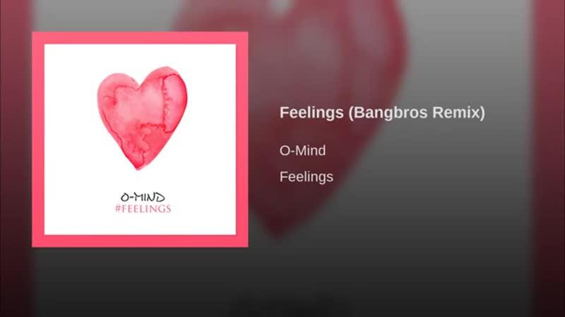 Feelings (Bangbros Remix)