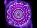 Медитация- комплексная очистка и гармонизация организма с Игорем Ткаченко